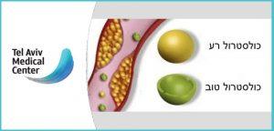 כולסטרול רע (LDL) , כולסטרול טוב (HDL)